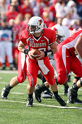 18 October 2008: Kevin Brockway looks back for his runner in a game which the Missouri State Bears came from behind to beat the Illinois State Redbirds 34-28 in front of 13,292 fans at Hancock Stadium on Illinois State Universities campus in Normal Illinois