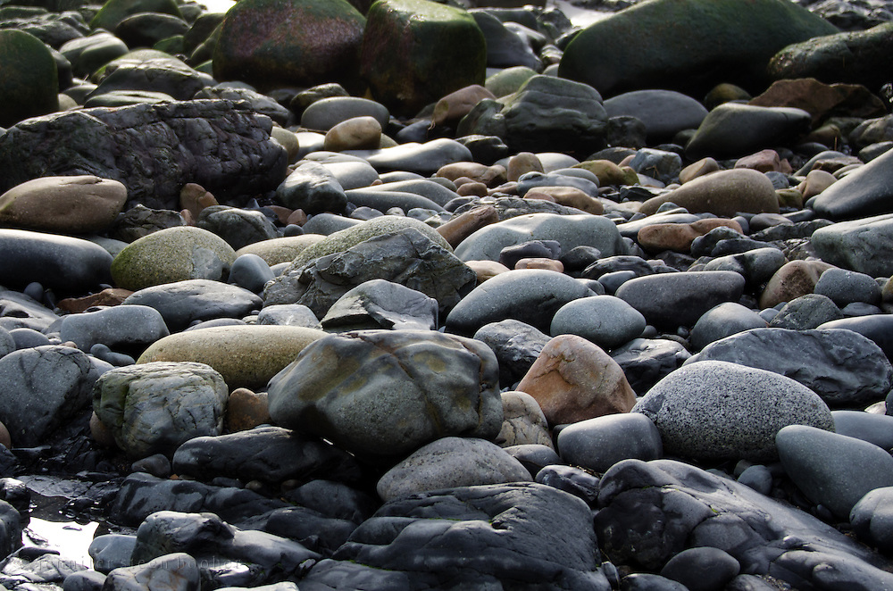 Beach stones exposed at low tide, Maine.