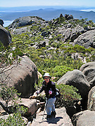 Hike steeply up bare rock on the Mount Amos Track, on the Hazards, in Freycinet National Park, Tasmania, Australia. Devonian Granite is the dominant rock type at Freycinet. Orthoclase, a pink feldspar gives the mountains and coastline their characteristic pink tint. Black micas and white quartz are also found. The Tasman Sea is part of the South Pacific Ocean. For licensing options, please inquire.