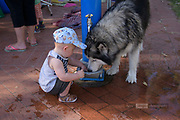 It was a very hot day . . . not that everyone there noticed :-) Hey, if you can't share your water-bowl with friends . . .