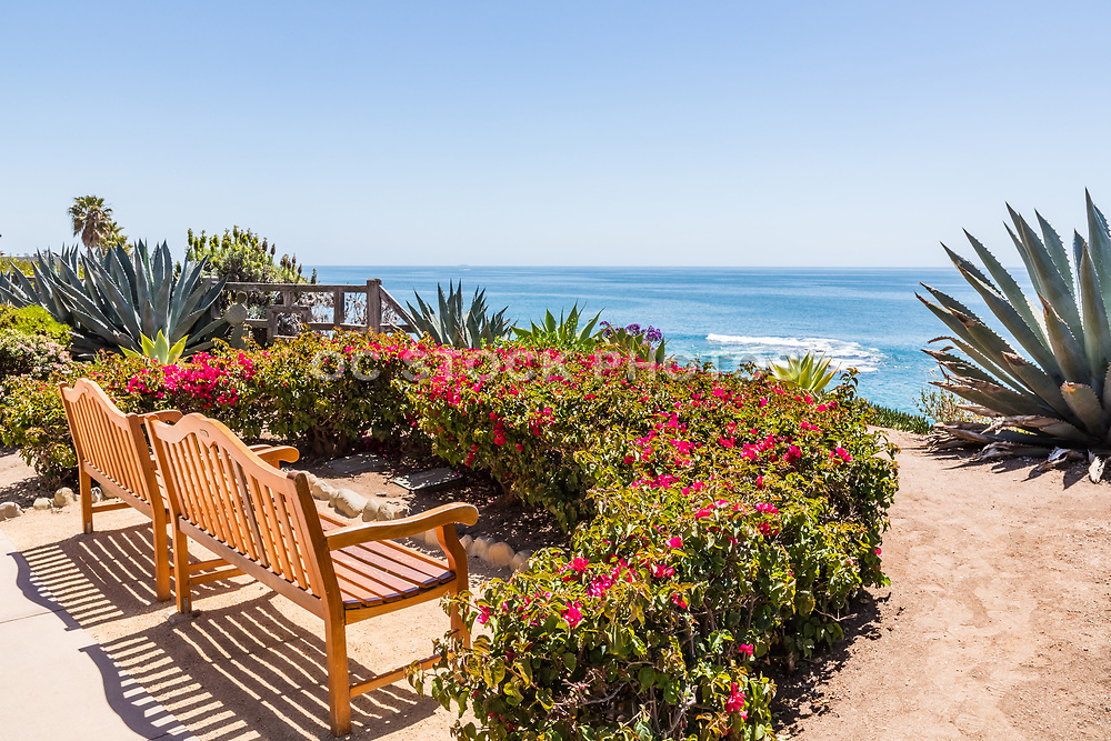 Wood Benches Resting on the Bluff Overlooking Laguna Beach Coastline