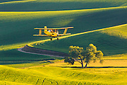 Crop duster over Washington's Palouse Region.