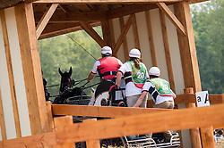 Wilf Bowman Ripley, (GBR), Belasco V, Nero, Roderick, Wikke, Zeeman - Driving Marathon - Alltech FEI World Equestrian Games™ 2014 - Normandy, France.<br /> © Hippo Foto Team - Jon Stroud<br /> 06/09/2014