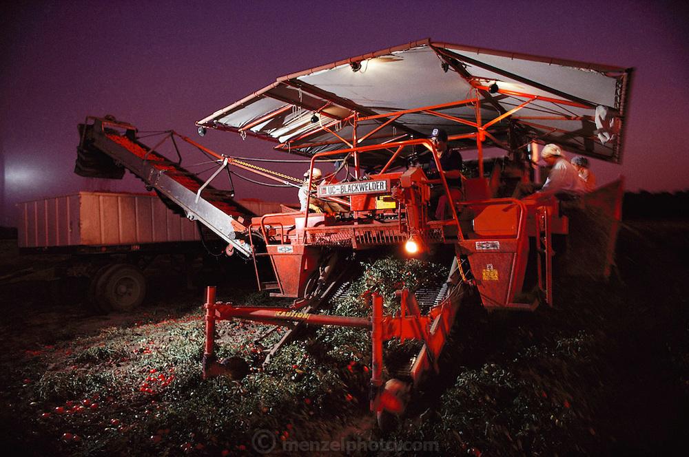 Tomatoes: Blackwelder tomato harvester at night, near Stockton, California, USA.
