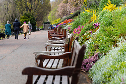 Edinburgh, Scotland, UK. 1 May 2020. Views of Edinburgh as coronavirus lockdown continues in Scotland. Streets remain deserted and shops and restaurants closed and many boarded up. Pictured; Elderly family walks in very quiet Princes Street Gardens.  Iain Masterton/Alamy Live News