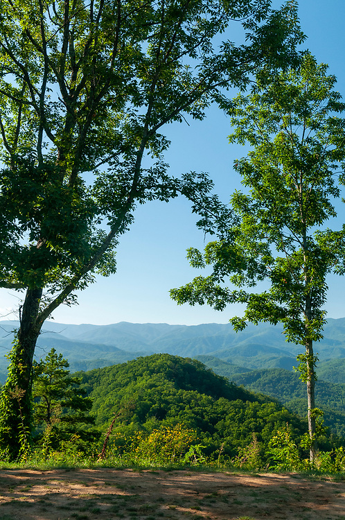 High Top (center) at the High Top Overlook on the Foothills Parkway in Great Smoky Mountains National Park in Wears Valley, Tennessee on Wednesday, August 12, 2020. Copyright 2020 Jason Barnette