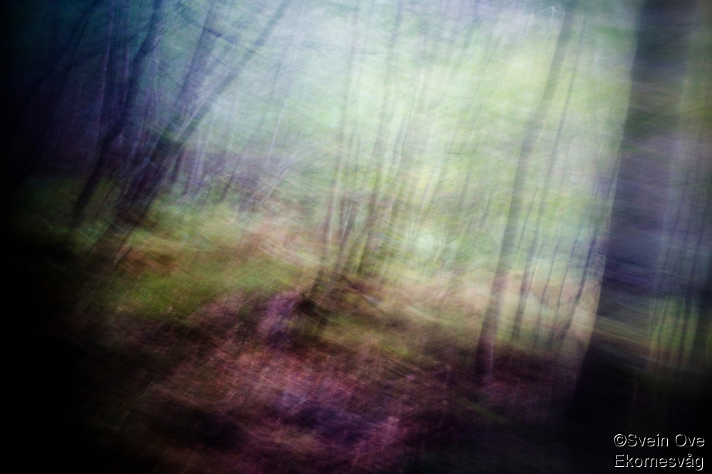 Endless.<br /> Foto: Svein Ove Ekornesvåg