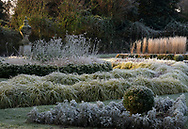 Frost coated plants on a February morning in the Italian Garden at Chiswick House, Chiswick, London, UK