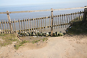 Fence across eroded road with sea below, Happisburgh, Norfolk, England