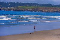 Beach scene, Carmel, Monterey County, California, USA