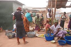 Local Food Market