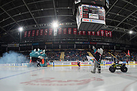 KELOWNA, CANADA - JANUARY 4:  Rocky Racoon, the mascot of the Kelowna Rockets stands at centre ice at the start of the game between the Kelowna Rockets and the Prince George Cougars on January 4, 2019 at Prospera Place in Kelowna, British Columbia, Canada.  (Photo by Marissa Baecker/Shoot the Breeze)