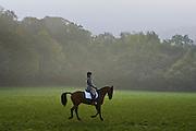 Horse and rider prepare for equestrian Dressage competition, Oxfordshire, United Kingdom