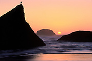 Sunset at Bandon Beach, Orgeon