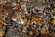 Detail of rippling water over colourful rocks in a stream, in the coastal woodland of Mendocino, California