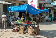 Street sales of vegetables in Rajasthan, India.