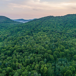Above the forest in Arlington, Vermont (Murray property.)