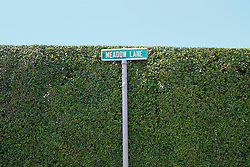 street sign for Meadow Lane against a hedge in Southampton, NY