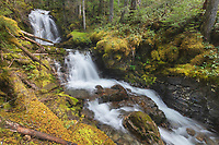Apogee Falls on Pyramid Creek, Ross Lake National Recreation Area, North Cascades Washington