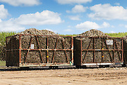 harvested sugar cane train ready for crushing under cumulus cloud in Kuttabul, Queensland, Australia <br /> <br /> Editions:- Open Edition Print / Stock Image