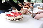 serving cream cake from a buffet dessert table