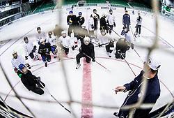 Ivo Jan during morning training at Ice Hockey camp of I. Jan, on July 28, 2016 in Ledna dvorana Tivoli, Ljubljana, Slovenia. Photo by Vid Ponikvar / Sportida