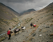 """Trekking from Shaur camp across Baharak, to the valley of Sang Nevishta (meaning """"Written Stones""""). Guiding and photographing Paul Salopek while trekking with 2 donkeys across the """"Roof of the World"""", through the Afghan Pamir and Hindukush mountains, into Pakistan and the Karakoram mountains of the Greater Western Himalaya. Wakhan Corridor."""