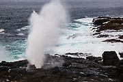 Sea spout on Suarez Point, Espanola Island, Galapagos Islands, Ecuador