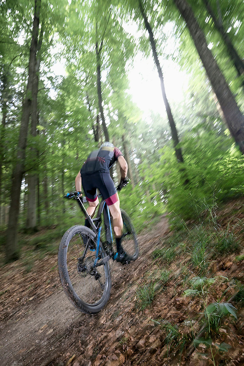 Mountain biker riding uphill on forest path, Bavaria, Germany
