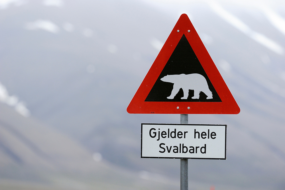 Polar Bear warning sign, Ursus maritimus, Svalbard, Norway