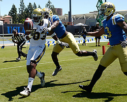 April 29, 2017 - Los Angeles, California, U.S. - UCLA Bruins Alex Van Dyke (83) drops a pas in the end zone during the UCLA football Spring Showcase on Saturday, April 29, 2017 in Los Angeles. (Photo by Keith Birmingham, Pasadena Star-News/SCNG) (Credit Image: © San Gabriel Valley Tribune via ZUMA Wire)