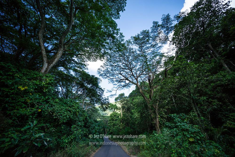 Adonara, Flores Timur, Nusa Tenggara Timur, Indonesia