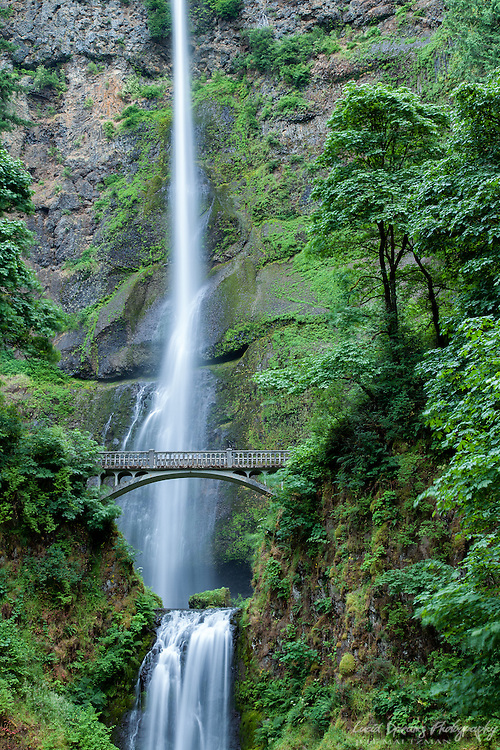 Multnomah Falls, with its classic footbridge, is an iconic location in the Columbia River Gorge of western Oregon, near Portland. While normally crowded with tourists, arrival in the very early morning affords a crowd-free view.