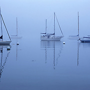 Sailboats in a foggy harbor in Castine, Maine