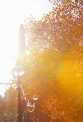 Autumn Trees and Cleopatra's Needle, London, England