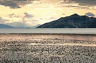 Early morning light on Lake Skadar National Park, Montenegro. Lake Skadar (Skadarsko jezero) lies across the border of Montenegro and Albania and is the largest lake in the Balkans © Rudolf Abraham