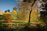 An autumn scene at the Saville Garden, Surrey, UK  October