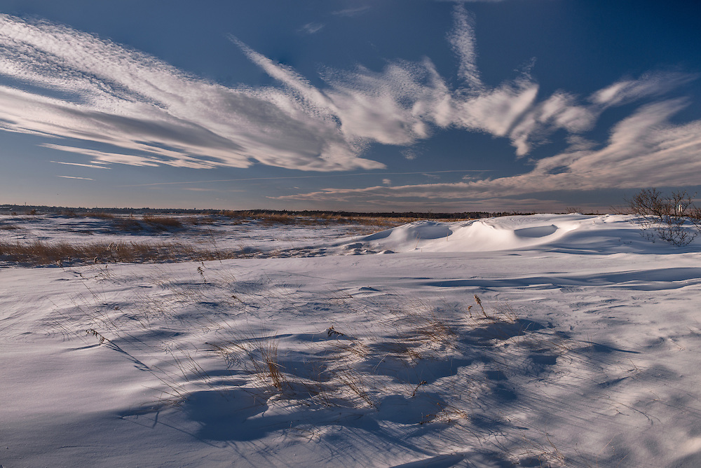 Snowdrifts and grasses at Salisbury Beach State Reservation in winter, Salisbury, MA