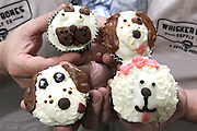 """Co-owners Perry Patten and Scott Tripp holds pupcakes, which are organic, healthy """"pupcakes"""" topped with a dog-friendly icing. A variety of decorated faces - of various dog breeds - are applied to the tasty """"pupcakes""""."""
