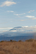 Mount Kilimanjaro is the highest mountain in Africa, and dominates the skyline at Amboseli National Park, Kenya