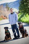 Rottweiler Dogs on a Walk