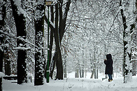 Bialystok, 26.01.2017. Po całodobowych obfitych opadach sniegu miasto zostalo przykryte 30 cm warstwa bialego puchu. Szczegolnie uroczo wygladaly miejskie parki N/z osniezone drzewa w Parku Zwierzynieckim i kobieta robiaca zdjecie smartfonem fot Michal Kosc / AGENCJA WSCHOD