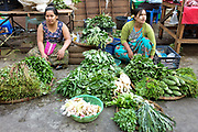 Women selling vegetables at Hledan morning market on 19th March in Yangon, Myanmar. Hledan is one of the 39 stations on the Yangon Circular Railway
