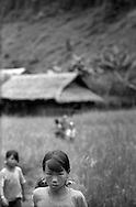 Young Lu children curiously observe tourists who enter their Hon village located between Sapa and Binh Lu, Vietnam, Southeast Asia