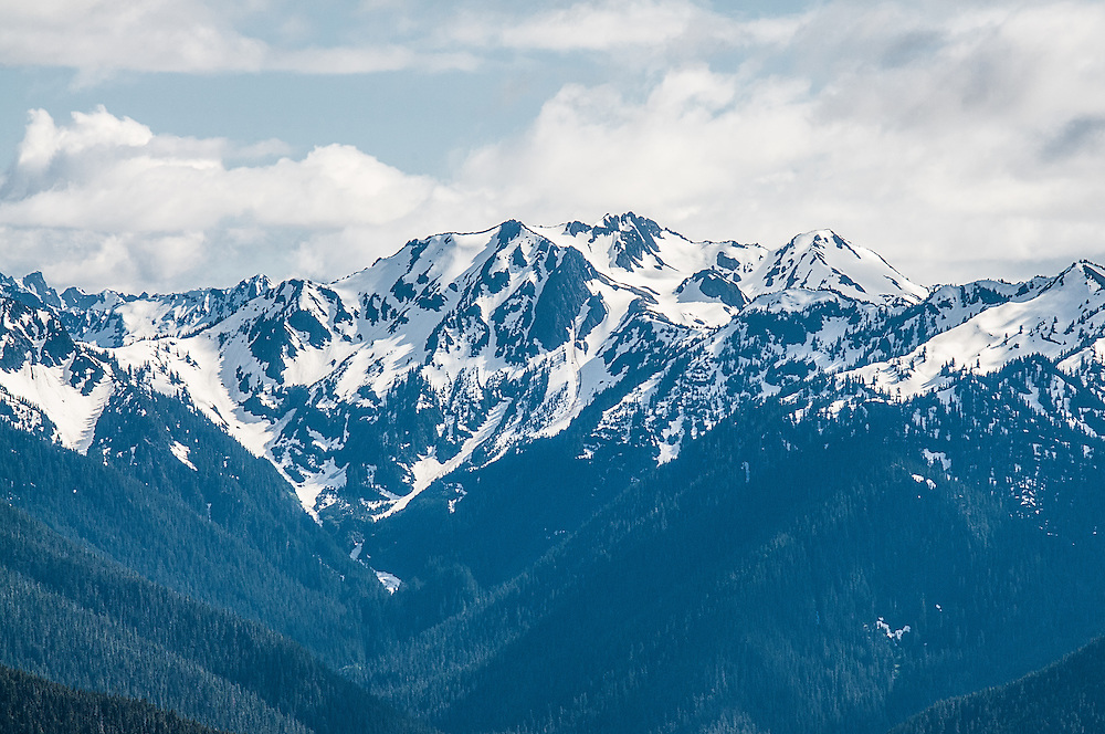 One of the most incredible views as seen from the top of Hurricane Ridge in the Olympic Mountains in Northwestern Washington. Even in summer these majestic peaks are covered in snow.