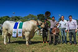Grande Campeao e Campeao Supremo da raça Charolez na 38ª Expointer, que ocorre entre 29 de agosto e 06 de setembro de 2015 no Parque de Exposições Assis Brasil, em Esteio. FOTO: Vilmar da Rosa/ Agência Preview