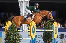 Azevedo Luiz Francisco (BRA) - Comic<br /> Final 7 years<br /> FEI World Breeding Jumping Championships for Young Horses - Lanaken 2014<br /> © Dirk Caremans