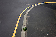 Two green beer bottles left in a side street outside a university campus building in Sheffield city centre, the remnants of a student party.