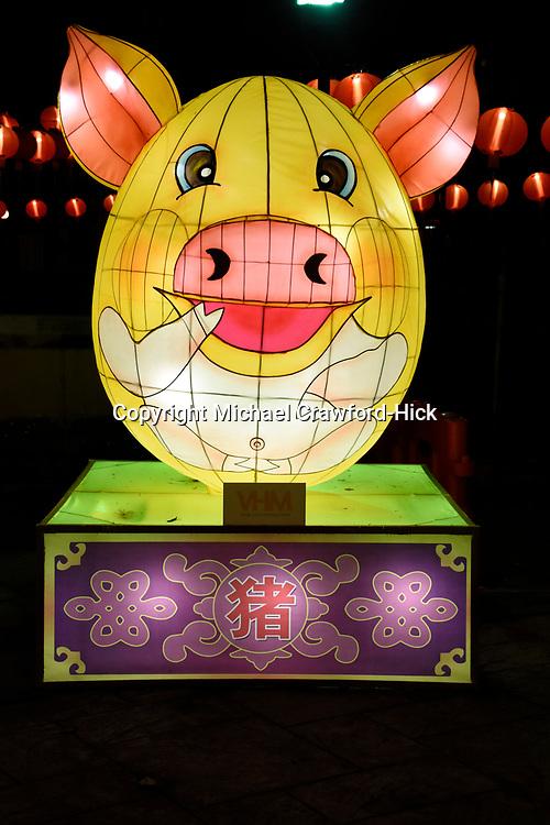 PIG  Lantern at Chinese New Year