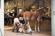 Grand Canyon blacksmith shop, the longest continually used blacksmith shop in the USA. South Rim Grand Canyon Livery Operation.